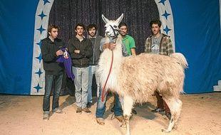 Le lama avait été soustrait au cirque par cinq étudiants un peu éméchés.