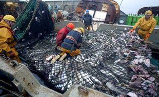 Un bateau de pêche débarque au port ses captures de cabillauds pêchés en mer de Barents en septembre 2004. (Photo illustration)
